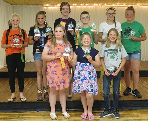 A total of 18 Allamakee County 4-H youth recently showcased their talents by competing in various communications and clothing events during the 2019...