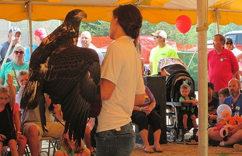 The National Eagle Center presented information about bald eagles Saturday, August 11 at Lansing Fish Days. A live juvenile bald eagle was part of...