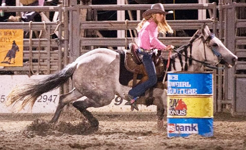 Local participants can register online for this year's nine events, including Mutton Bustin' for youthThe 2018 Allamakee County Fair...
